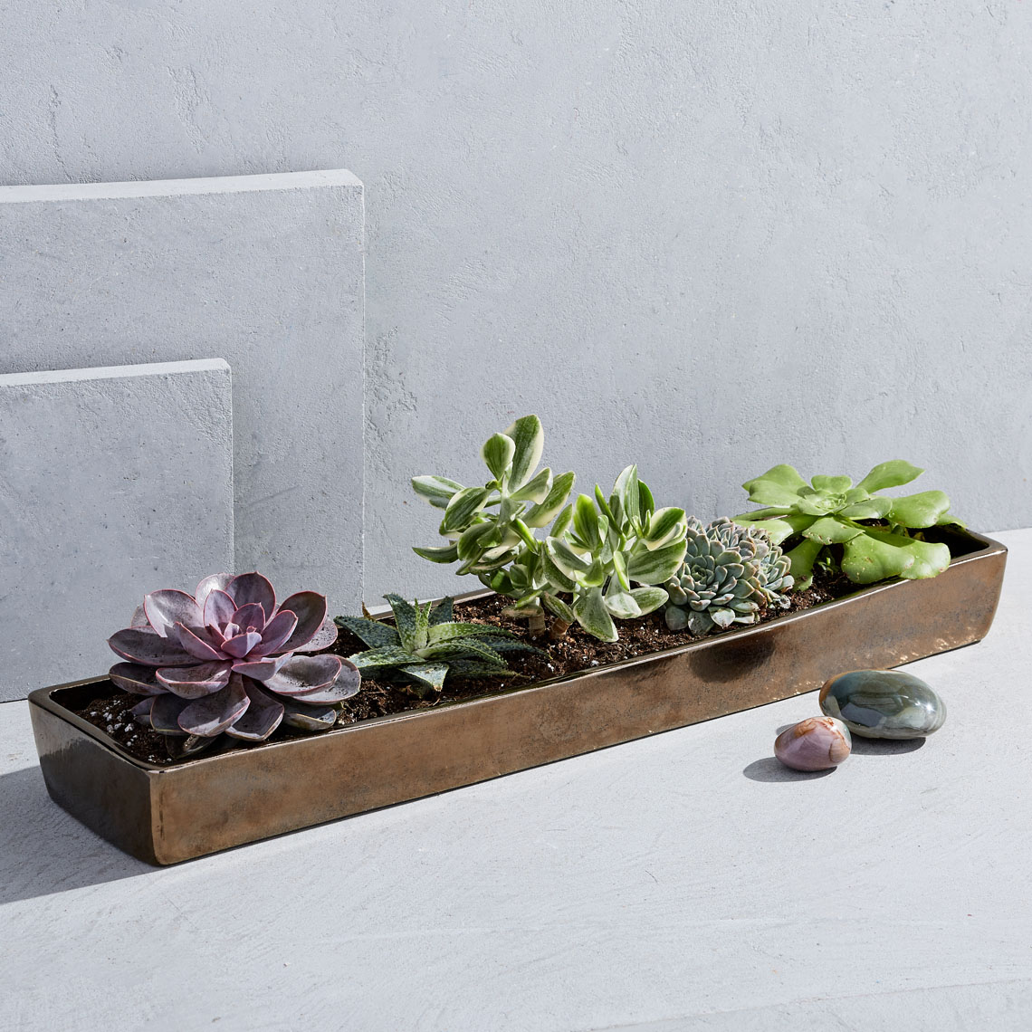 pip-elongated-ceramic-centerpiece-tray-large-espresso-su17-060